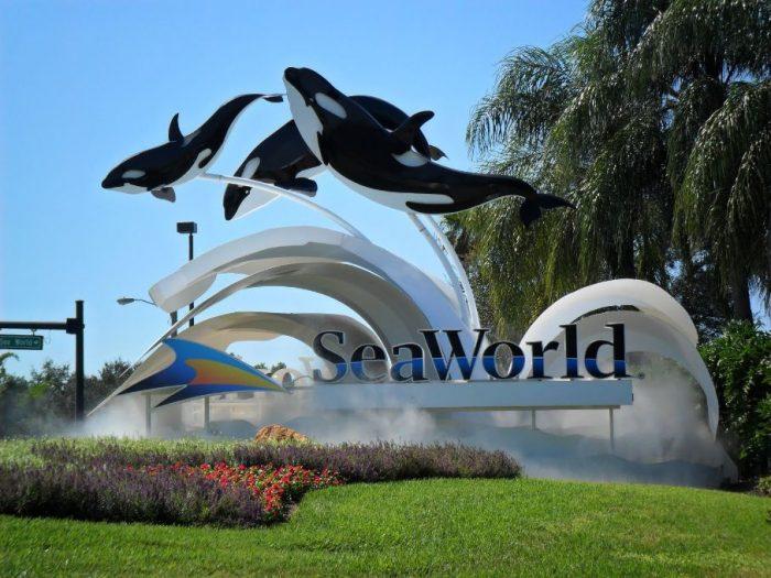 Parque SeaWorld em Orlando 47