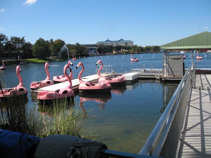 Parque SeaWorld em Orlando: Flamingo Paddle Boats
