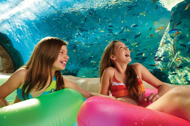 Parque Aquatica em Orlando: Loggerhead Lane