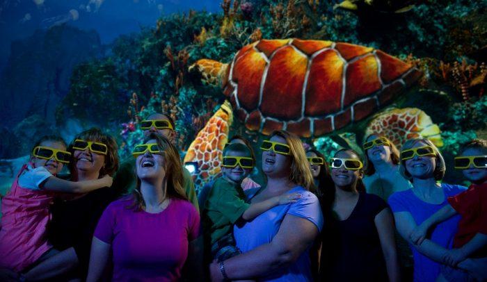 Parque SeaWorld em Orlando: Turtle Trek