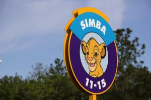 5 dicas para não passar aperto em Orlando: estacionamento