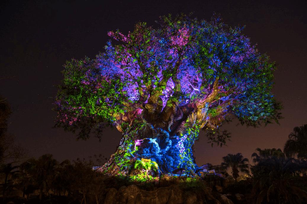 Shows da Disney em Orlando: Árvore da Vida