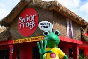 International Drive em Orlando: Señor Frogs