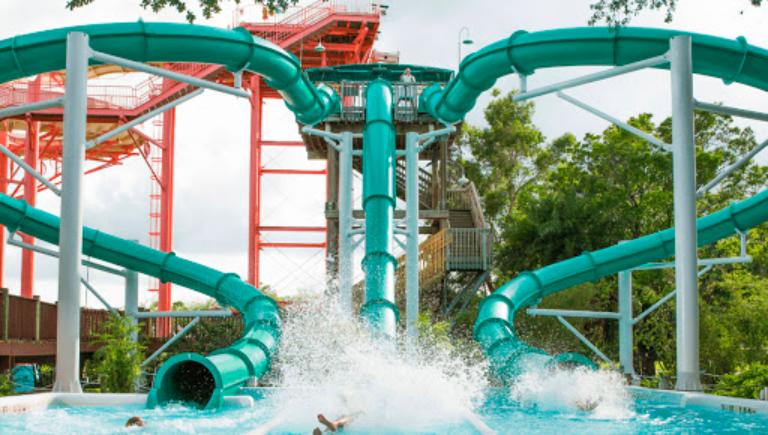 Parque Adventure Island Tampa Orlando: Water Moccasin