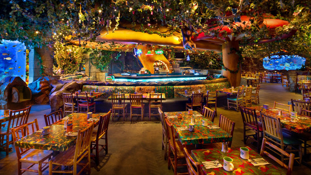 Disney Orlando para adolescentes: restaurante Rainforest Cafe