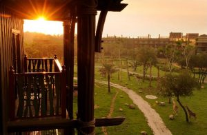 Hotel Disney Animal Kingdom Lodge em Orlando: vista para a savana local