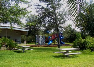7 parques e reservas naturais em Orlando: Parque Ralph V. Chisholm
