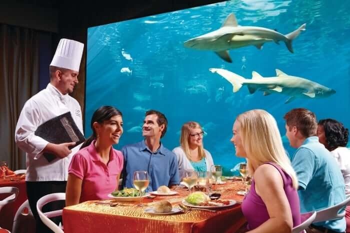 Restaurantes do parque SeaWorld em Orlando: restaurante Sharks Underwater Grill