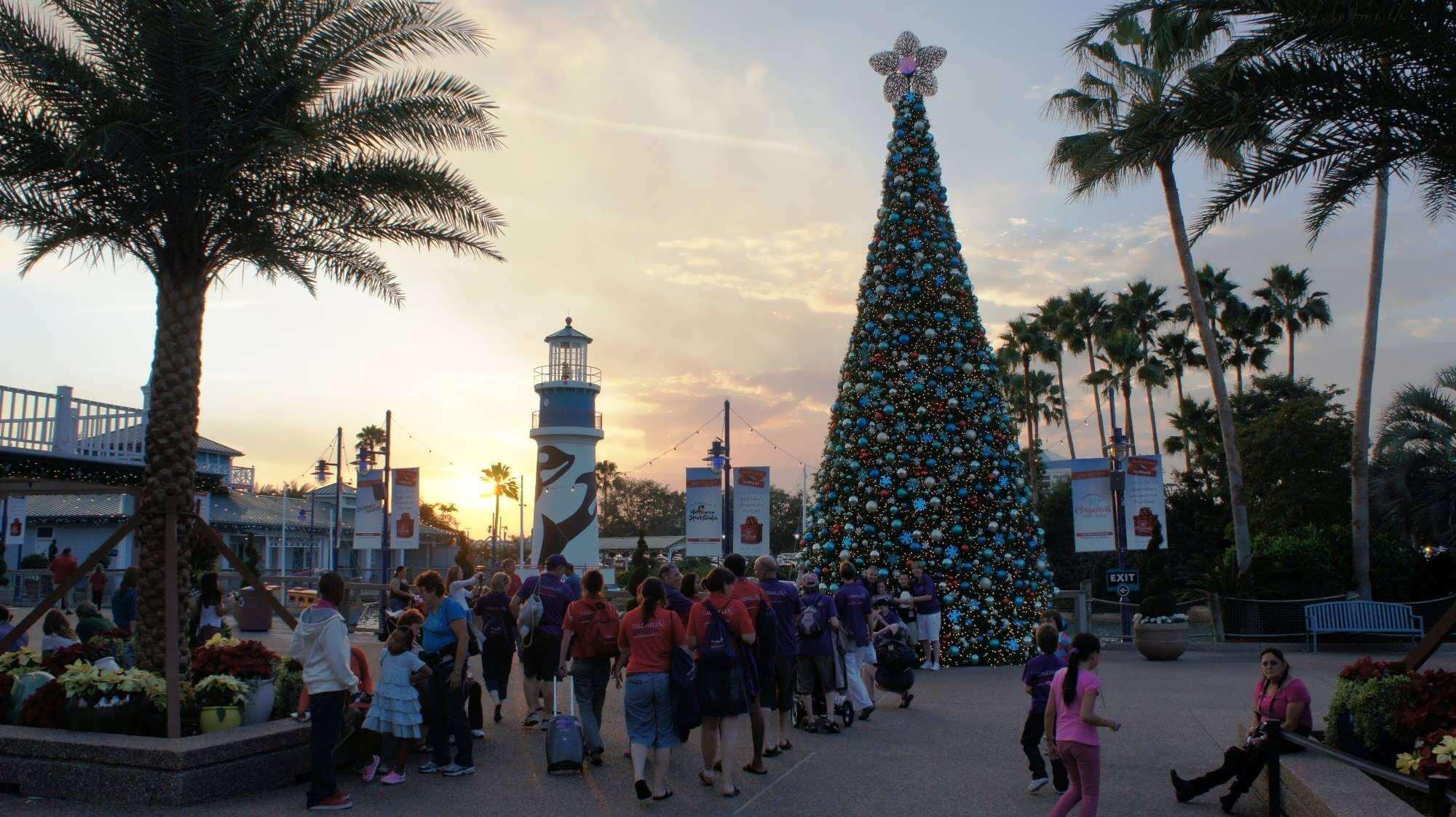 O que fazer no Natal em Orlando em 2018: parque SeaWorld