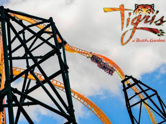 Tigris: nova montanha-russa do parque Busch Gardens
