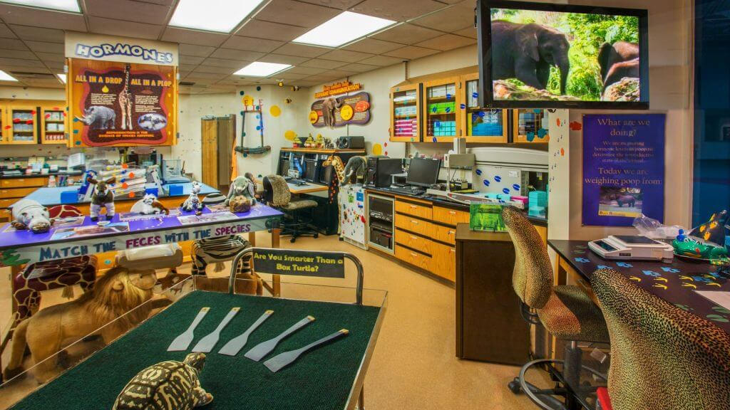 Rafiki's Planet Watch no Disney's Animal Kingdom em Orando: Conservation Station