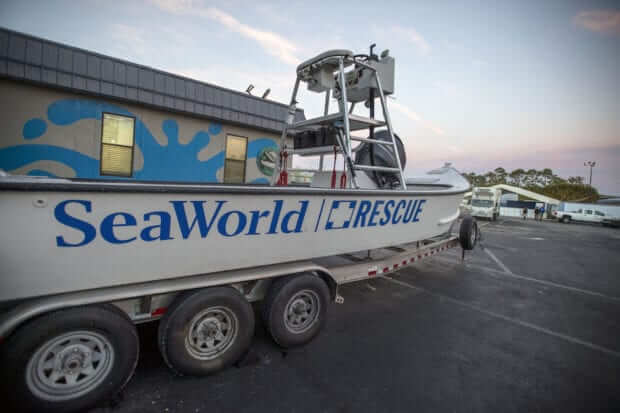 Passeio pelos bastidores do SeaWorld Orlando: SeaWorld Rescue Center
