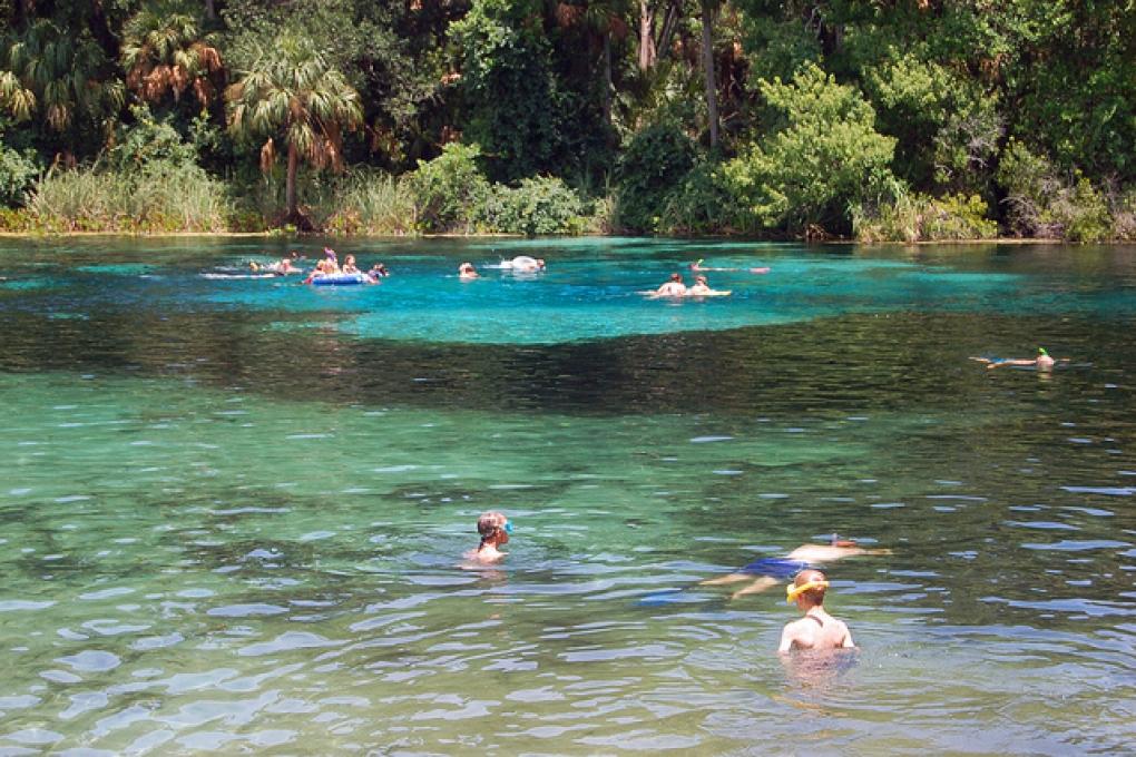 Ocala National Forest perto de Orlando