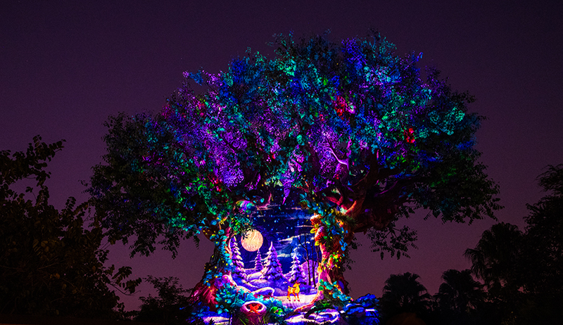Natal na Disney Orlando em 2019: Tree of Life Awakenings no Animal Kingdom