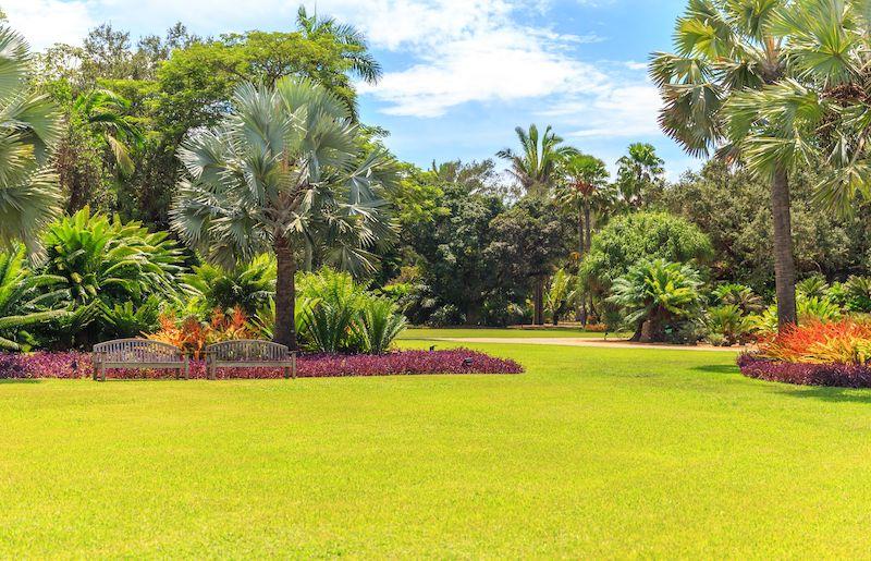 Fairchild Tropical Botanic Garden em Coral Gables: jardim botânico